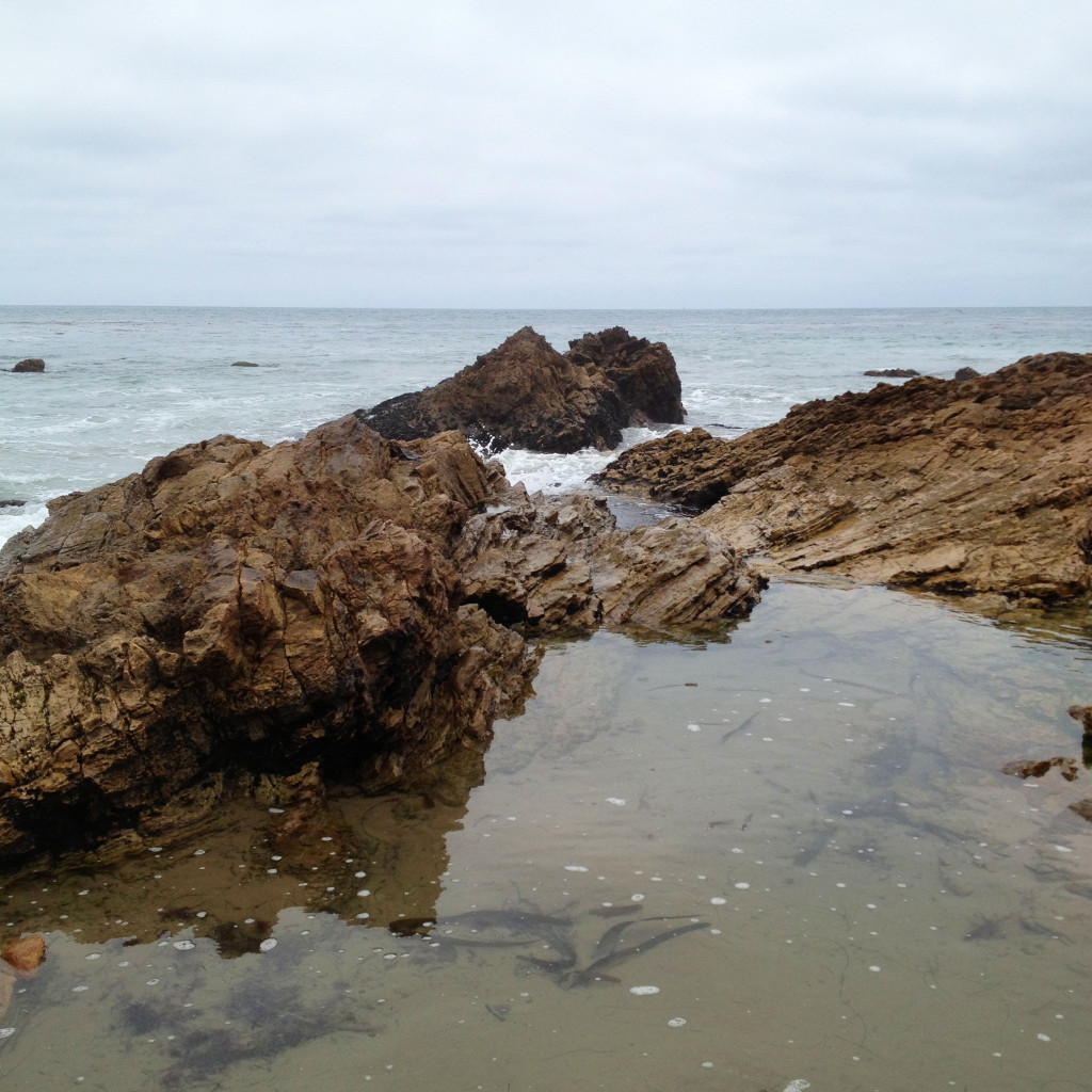 0913crystalcove